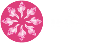 DFS Plus logo